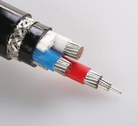 0.6,1KV 交联聚乙烯绝缘电力电缆 CJPF86 SC(2)