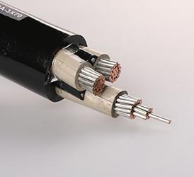 0.6,1KV 乙丙橡胶绝缘舰船用电力电缆 JEPJSC3X70