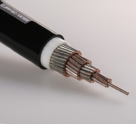 0.6,1KV-Xlpe power cable for ship-JYJPJSC-1X300